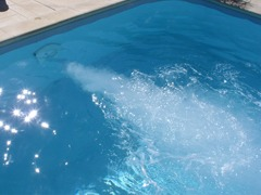 Système ncc nage courant piscine